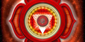 12931899 - the root chakra